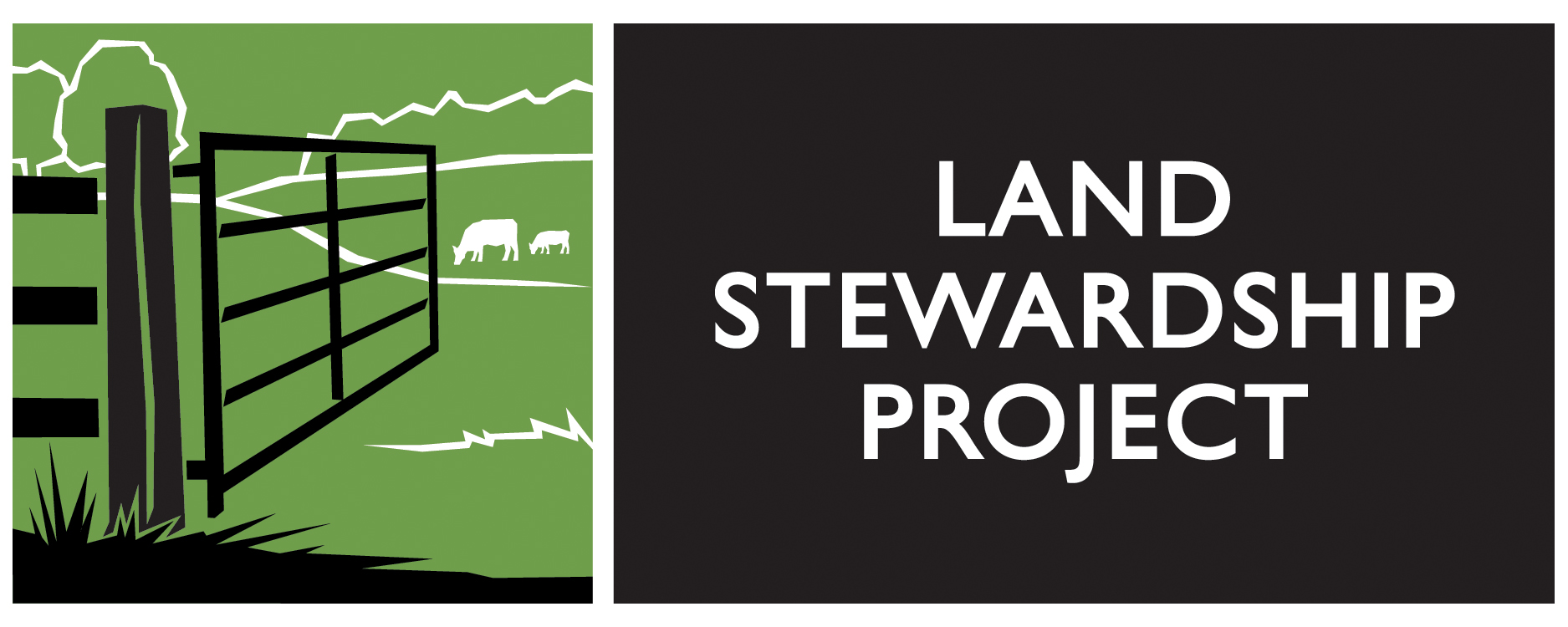 LSP Logo: Horizontal